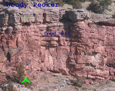 Rock Climbing Photo: Woody Pecker