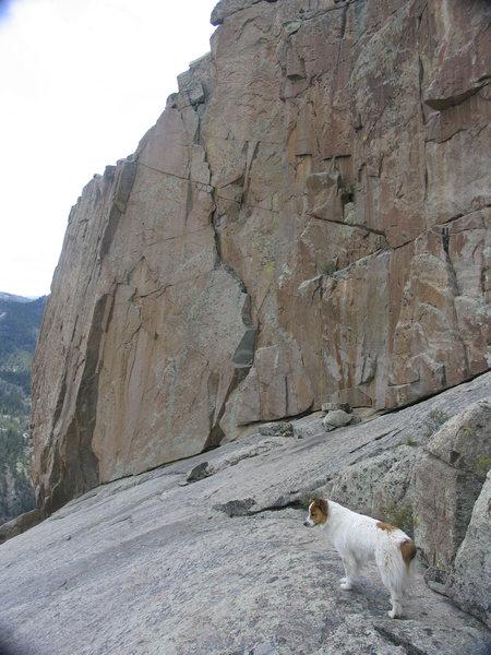 Rock Climbing Photo: The Jagger Jumper close up