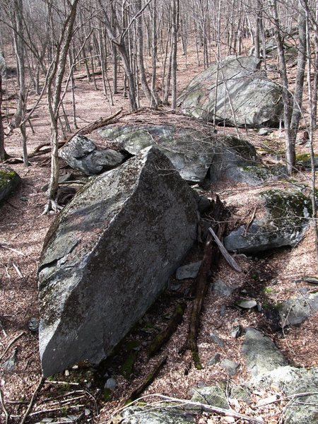 Rock Climbing Photo: Huckleberry boulder (15ft tall) from on top of the...