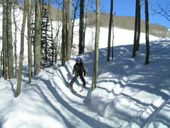 Rock Climbing Photo: Teaching how to ski trees