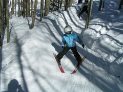 Rock Climbing Photo: Teaching Tree Skiing