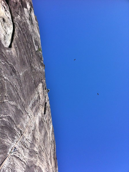 Rock Climbing Photo: P-2  Climbs amazing holds on swirls of rock with h...
