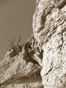 Rock Climbing Photo: James Scott works the crux, 3-3-12. Photo:  Dances...