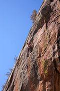 Rock Climbing Photo: JJ, on the FA of Slipstream...