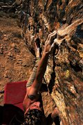 Rock Climbing Photo: Red Eyed Billy V4 Moe's Valley, Ut