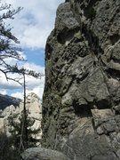 Rock Climbing Photo: The jug-a-licious Jug Wall