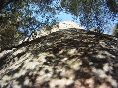 Rock Climbing Photo: All the way to the top.... view up the route