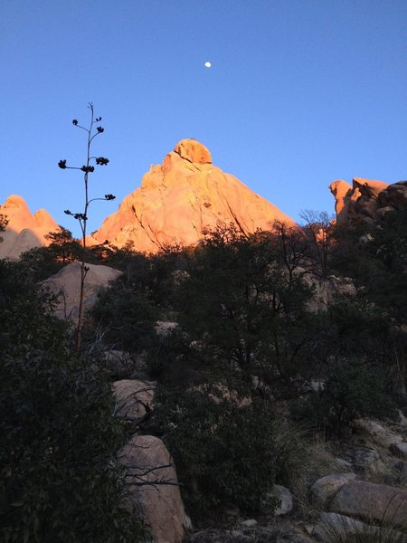 Rock Climbing Photo: Warpath Dome from the wash/drainage