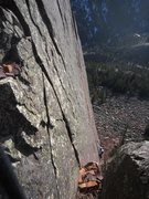 Rock Climbing Photo: Kat A follows P3 of 'Over The Hill' (5.10b) at Rin...