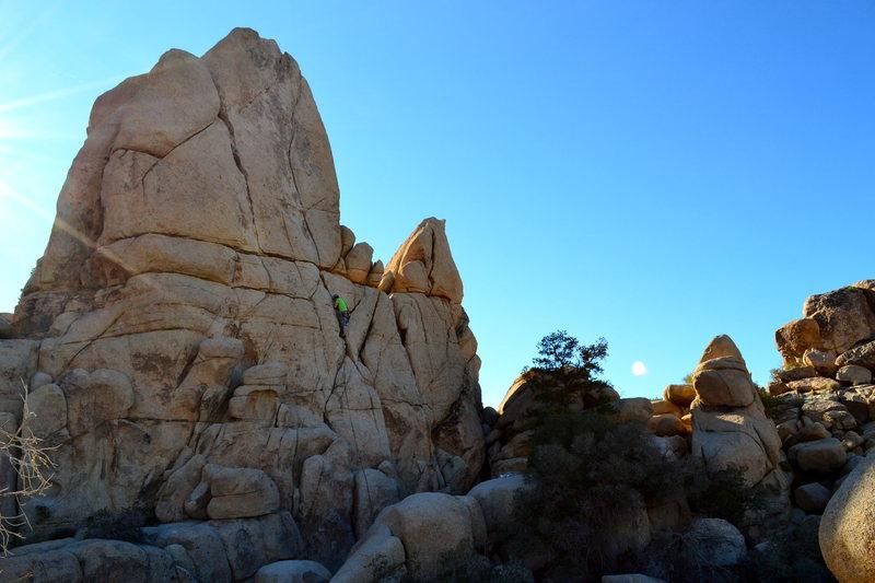 Rock Climbing Photo: Tyler getting into it.