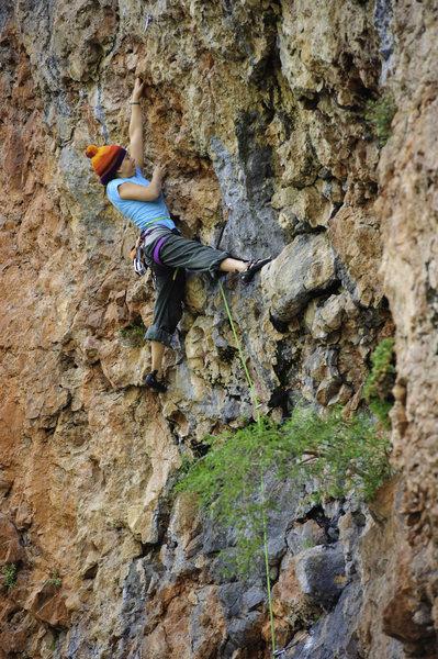 Rock Climbing Photo: Caroline North on Cliff Chicken
