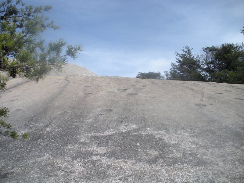 Looking up from the tree ledge at the top of pitch three.  Easy scramble to the top of Stone Mountain.