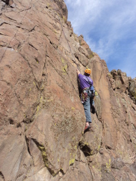 Rock Climbing Photo: Dave found you can get pink and red tricams to fit...