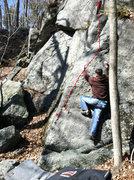 Rock Climbing Photo: Tom O'Hara on Tree Love
