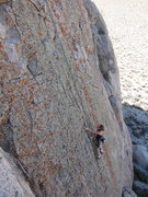 Rock Climbing Photo: Cambria working through the lichen on Grape Nuts