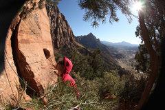 Rock Climbing Photo: Confluence - Zion; March 2012
