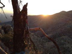 Rock Climbing Photo: Catalina Magic