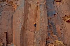 Rock Climbing Photo: King cat
