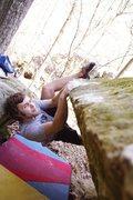 Rock Climbing Photo: Zach on The Lorax