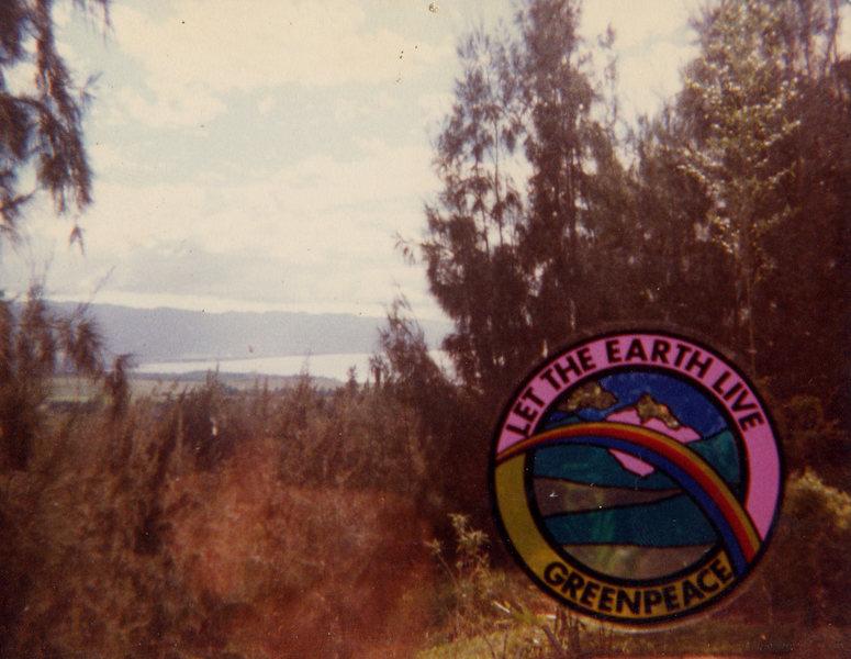 The view through our patio door of Waimea Bay
