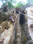 Rock Climbing Photo: Annaliese grooving up the tufa tube.