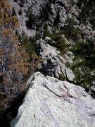Rock Climbing Photo: Deb on P5.