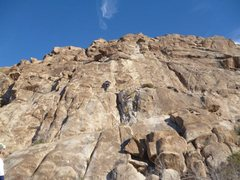 Rock Climbing Photo: Red Shoes