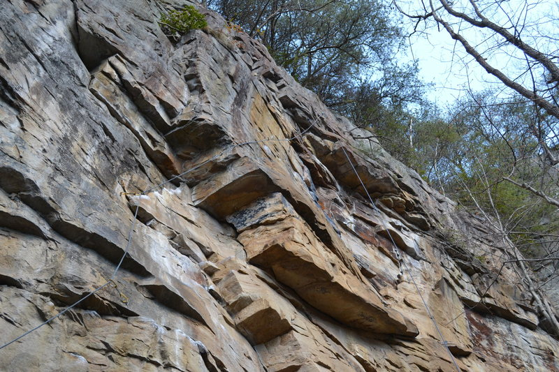 "Rock Climbing Photo: Bolt line of ""Moving Target"""