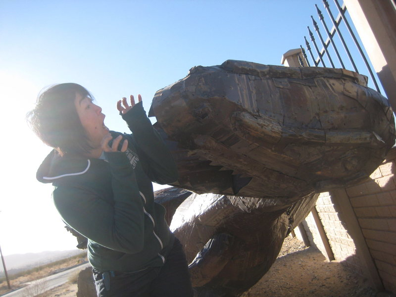 Rock Climbing Photo: dinosaur down