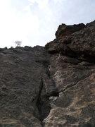 Rock Climbing Photo: A bit of crack.
