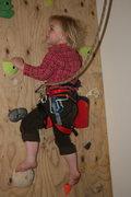 Rock Climbing Photo: My Black Diamond Wiz Kid Harness