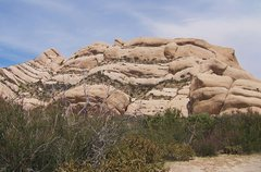 Rock Climbing Photo: Sage brush in front of the Northern Formations.