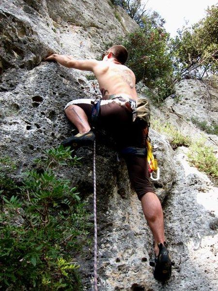 Rock Climbing Photo: Start of Proctolin
