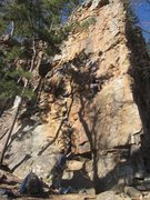 Rock Climbing Photo: Crimp Scampi 5.10d