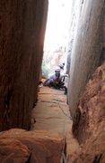 Rock Climbing Photo: Dan coming up Weeping Rock Chimney