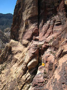 Rock Climbing Photo: second single rope rap station. the rap anchor is ...