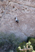 Rock Climbing Photo: Tia Stark leading Rubicon from the (in?)direct sta...