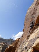 Rock Climbing Photo: Mo leading P8