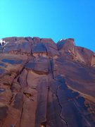Rock Climbing Photo: wee doggie