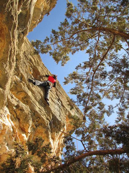 Rock Climbing Photo: Trisha Ray enjoying the sun on Cross Timbers, wint...