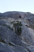 Rock Climbing Photo: Take your guess