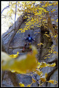 Rock Climbing Photo: Foliage and hippy