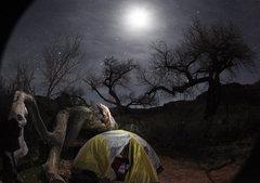 Rock Climbing Photo: Camping at Cottonwood Valley....perfect spot.