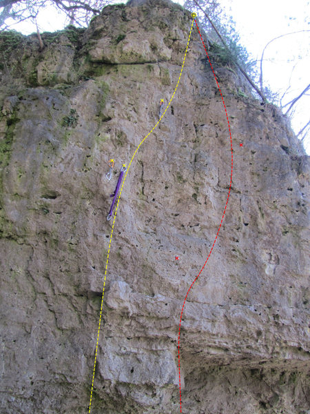 Rock Climbing Photo: Here are the two left-most routes. Yellow is Trilo...