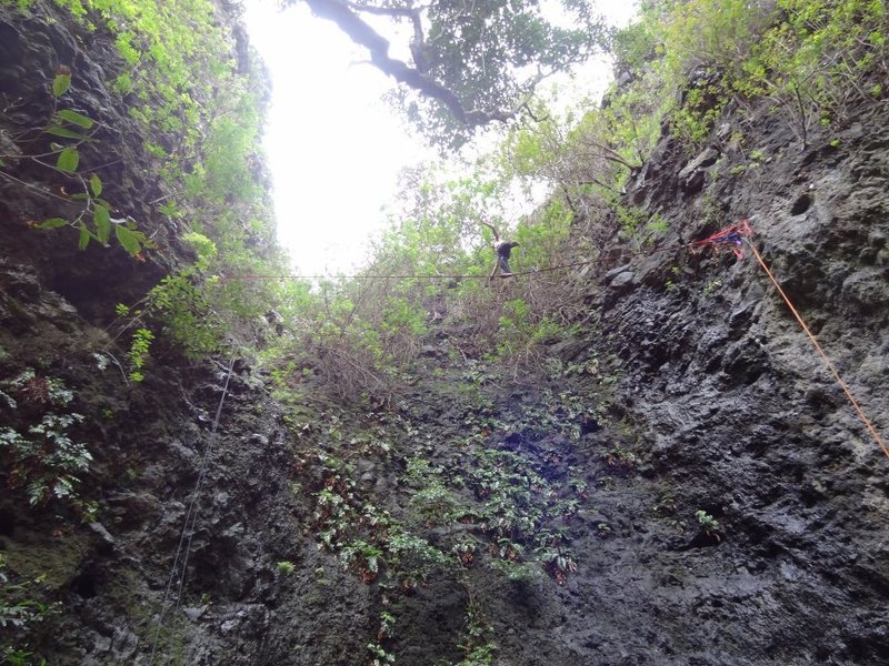 Rock Climbing Photo: highlining at the jungle crag on Oahu