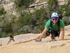 "Rock Climbing Photo: On the sheepshead (""Ewephoria"")"