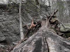 Rock Climbing Photo: Crimp