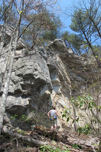 Surry County Ethics, 5.10a