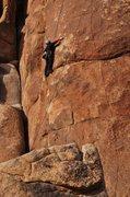 Rock Climbing Photo: Climber on Monaco  photo by bob gaines