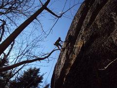 Rock Climbing Photo: Silver Lake pandorum